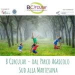 B Circular continua